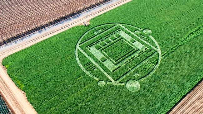 crop circle, formation, salinas, California, news, top secret, computer chip, AI, circuit, UFO, UFOs, sighting, sightings, tech, ET, aliens, Justin Beiber, Selena Gomez, world, paranormal, area 511
